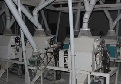 玉米高筋粉加工机械